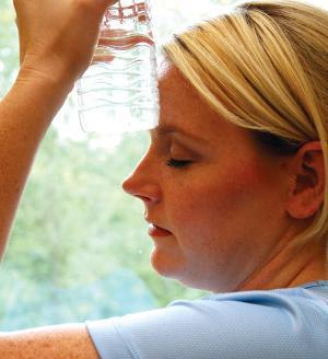 Menopause, Insomnia andPycnogenol