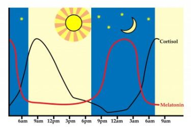 Melatonin ineffective for insomnia but effective for other sleep problems