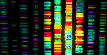 Genetic variants may be an underlying factor in insomnia